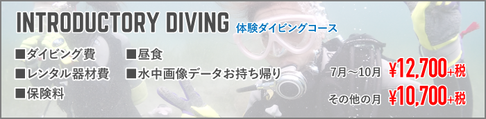 INTRODUCTORY DIVING 体験ダイビングコース